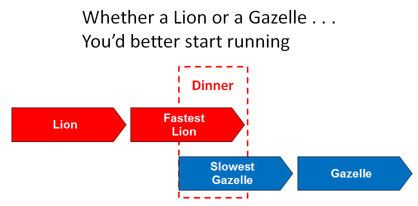 Consultantsmind-Lion-or-Gazelle